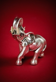 Индийский слон серебряный